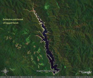 Thomson catchment showing logged areas