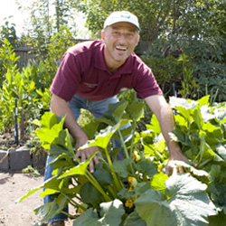 Essential Tips To Increase Your Knowledge Of Organic Horticulture