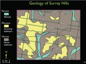 Geology of Surrey Hills