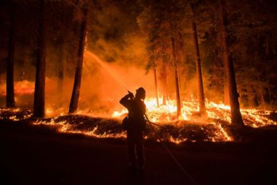 Firefighter sprays water on the King Fire in California (Reuters: Noah Berger)